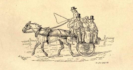 Jaunting cart